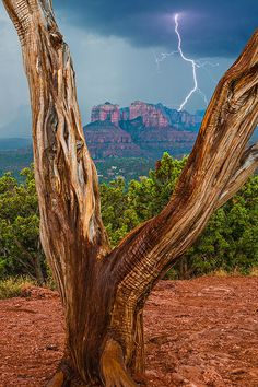 Lightning Over Cathedral Rock - Sedona, Arizona - visited Sedona today, 9/29/2013.  Took a picture of Cathedral Rock, but it was a beautiful day with brilliant blue skies.  Off my bucket list and put here.