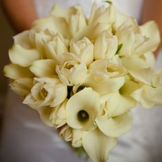 Ivory calla lilies mixed with ivory tulips