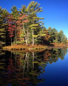 #WonderWatch 2015-127 As Above, So Below #UpperDelawareRiverRegion #fall #FallFoliage #foliage #water #reflection #mirror #Autumn #beauty #friday #weekend #nature #NaturePhotography #sandylongphotos #GlimpsesOfFall #lake #Life #love #MarvelsOfNature #October #Peaceful #PoconoMtns #PeakFoliage #quiet #pond #TakeNotice #wow #Zen