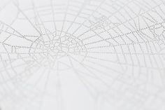 miso : tokyo web - {detail}, pin-pricks on paper, 2013 still on show at 'bright night sky' at backwoods gallery