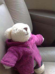Misia jedzie samochodem :)