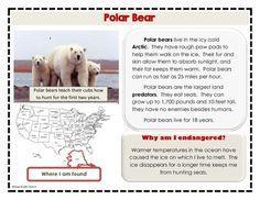 ENDANGERED ANIMALS LITERACY CENTER AND RESEARCH ACTIVITY - TeachersPayTeachers.com