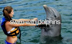 Swin with the dolphins