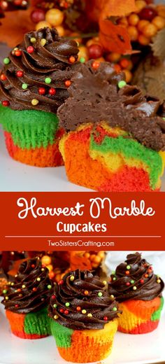 Harvest Marble Cupcakes - a beautiful and colorful cupcake that would be a great Thanksgiving dessert, Autumn Potluck or Fall Bake Sale. Cupcakes never looked so good or were so easy to make. What a fun and delicious Thanksgiving Treat. Follow us for more fun Thanksgiving Food Ideas.