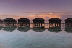 Watching the sunset at the over-the-water bungalows at Lily Beach Resort & Spa in the Maldives. Find out how to plan a trip to the Maldives to see these sunsets for yourself! maldives travel | maldives travel tips | travel tips | travel planning Beaches In The World, Places Around The World, Amazing Destinations, Travel Destinations, Travel Tips, Maldives Vacation, Overwater Bungalows, South America Travel, Africa Travel