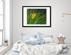 Discover «Spring Colors», Limited Edition Fine Art Print by Glink - From $29 - Curioos