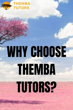 Parents choose Themba Tutors because we know that no two students are alike. Wе work hard to make sure all students know that we truly care about their performance in school, and that we will do whatever is necessary to make sure they have the tools and resources they need to succeed. Contact Themba Tutors! We have tutors who can help you or your child. Call: (917) 382-8641, Text: (833) 565-2370 Email: info@thembatutors.com (we respond to email right away!).