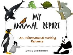 Informative/expository writing templates for beginning report writing, with vocabulary cards, templates and a friendly rubric. This set should help your kids get started with their first real report to meet common core standards for informative/expository writing. You provide the books or use the internet to research! Gr. 1-3