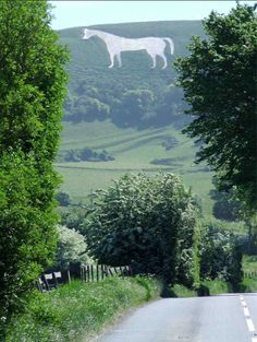 Did you know that the Westbury white horse is the oldest of the Wiltshire horses?