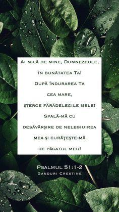 Plant Leaves, Plants, Dios, Plant, Planets