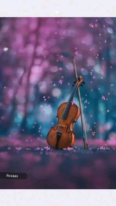 Violin Sheet Music, Audio Track, Wedding Songs, Mood Swings, Love Quotes For Him, Love Songs, Relationship Quotes, Dog Lovers, Youtube