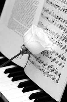 Piano with pale pink rose leaning against sheet music Piano Keys, Piano Music, Sheet Music, Music Sheets, Sound Of Music, Music Is Life, My Music, Jazz Music, Touches De Piano
