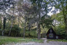 House In The Woods, Budapest, Places To Go, Cabin, House Styles, Nature, Luxury, Naturaleza, Cabins