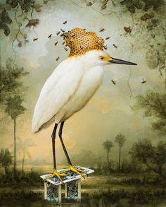 BEEHIVE BY KEVIN SLOAN