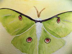 Pencil Drawings, Painting & Drawing, Paintings, Animals, Animales, Paint, Animaux, Painting Art, Animal