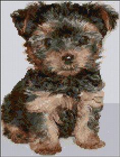 Cross Stitch | Yorkshire Terrier xstitch Chart | Design