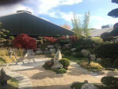 Japanse tuin - II | Rotgers en van Ingen Bonsai, Van, Plants, Plant, Vans, Planets, String Garden, Vans Outfit