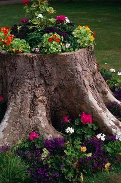 Recycling tree-stump for planter and decorating with flowers .this is really a terrific idea! The only thing I need to know is what do you use to hollow out the tree stump so I can fill it with soil? Unique Gardens, Beautiful Gardens, Beautiful Flowers, Nice Flower, Mini Gardens, Fairy Gardens, Colorful Flowers, White Flowers, Lawn And Garden