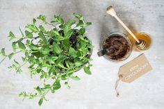 Krem czekoladowy z batatów Parsley, Spinach, Herbs, Vegetables, Food, Essen, Herb, Vegetable Recipes, Meals