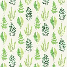 Fresh and light Angel Ferns botanical print fabric from Sanderson- perfect for the kitchen, dining room, bedroom or bathroom.
