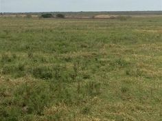 Beautiful open and improved tract of land perfect for your new home and cattle ranch.  It is cross fenced for cattle rotation features several tanks for watering cattle and wildlife in the area.  This land offers so much for the cattle rancher or for the recreation enthusiast.  A barn for cover out of the weather a set of corrals and working pens a loading chute and huge hay trap for storing hay  yearly.  Partial new fences were built where needed.  Electric is available and runs down this…