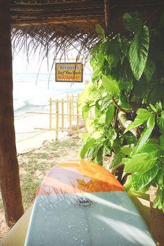 my little paradise-3 | via my-little-pineapple