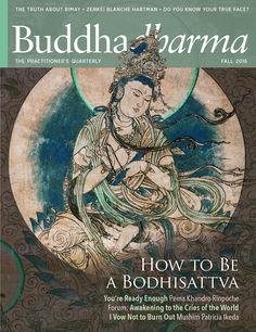 20 Lion S Roar And Buddhadharma Magazines Ideas Buddhist Wisdom Buddhist Buddhist Teachings