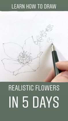 Learn to draw realistic flowers in less than a week! Join me and hundreds of other artists as we practice our craft, gain trust, and pursue our dreams together. I can not wait to get started and see how quickly you learn to draw floral illustrations. Drawing Lessons, Drawing Tips, Art Lessons, Painting & Drawing, Drawing Drawing, Watercolor Drawing, Drawing Ideas, Dream Drawing, Watercolor Video