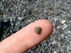 A little bit of love.  My daughter, Caity loves to look for, and collect heart shaped rocks....she must have a hundred lbs. worth by now.....lol.