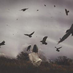 talainafisher:  (Talaina Fisher) | An Unkindness of Ravens