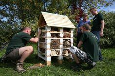 Otwarcie hotelu dla owadów zapylających Multimedia, Teak, Shed, Outdoor Structures, Outdoor Decor, House, Home, Homes, Barns