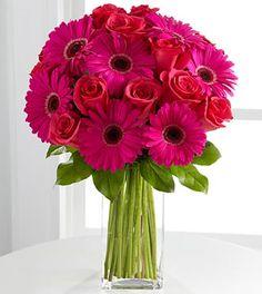 Adrenaline Blush Bouquet - 22 Stems  hot pink gerber and fuchsia roses