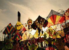 qingming kites - <3