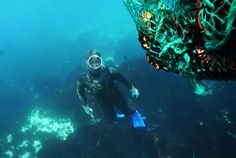 Jeju Island's women divers close to UNESCO listing