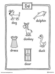 Letter D Beginning Sound Color Pictures Worksheet