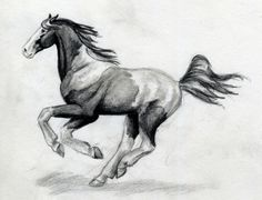 Google Image Result for http://www.deviantart.com/download/14051365/pianted_horse_running_by_SpottedPegasus.jpg