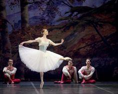 Balletomane - passioneperladanza:   Svetlana Zakharova as...
