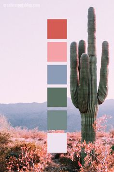 palette inspired by a pale pink desert sunset and tall saguaro cactus. palette inspired by a pale pink desert sunset and tall saguaro cactus. Color Schemes Colour Palettes, Red Colour Palette, Pink Palette, Sunset Color Palette, Mauve Color, Beach Color Palettes, Vintage Colour Palette, Orange Color Palettes, Bright Color Schemes