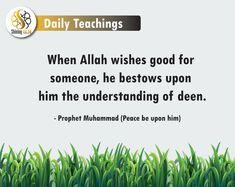When Allah wishes good for someone, he bestows upon him the understanding of deen.   Prophet Muhammad (Peace be upon him) Peace Be Upon Him, Prophet Muhammad, Deen, Allah, Wish, Learning, Studying, Teaching, Onderwijs