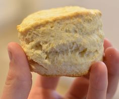 The Science of Biscuits