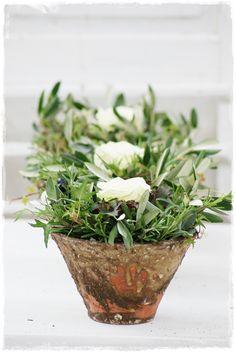 Precious white roses and olives - Wohnen und Garten Foto