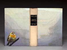 Beautiful bird painted on an old book. Inside, the pages are carved out to create a landscape of their native habitat.