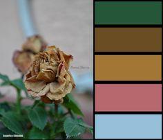 #earth #color #colors #photo #landescape #beautifoul #nature #lovenature #arcobaleno #luci #light #bordo di una foto