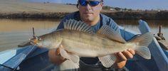 O deosebita experienta de pescuit la salau pe lacul Frasin, alaturi de echipa Wizard's Fishing Team.  www.magazinulupeste.ro https://www.facebook.com/magazinulupeste.ro http://wfteam.ro/ https://www.facebook.com/Wizards-Fishing-Team-546224828744892/  MUSIC : https://www.youtube.com/watch?v=PPtSKimbjOU