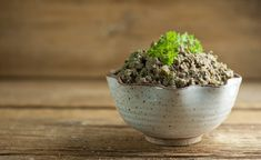 This recipe for easy chicken liver pate is the perfect decadent holiday appetizer - rich, flavorful and just right for spreading on your favorite cracker. Chicken Liver Pate, Chicken Livers, No Cook Appetizers, Holiday Appetizers, Liver Recipes, Crackers, Easy Meals, Apps, Favorite Recipes
