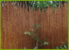 Looking for cheap Bamboo Fence Panels for your Garden or Deck in Brisbane? Then you cant go past Bamboo Design, for all quality Indonesian products see our great range of Bamboo Fence Panels. Brick Fence, Front Yard Fence, Diy Fence, Fence Landscaping, Fence Gate, Fence Stain, Farm Fence, Metal Fence, Reed Fencing