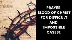 Catholic Prayer For Healing, Prayers For Healing, Powerful Prayers, Yes And Amen, Blood Of Christ, Jesus Prayer, Power Of Prayer, Worship, Father