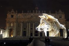 Wildlife Light Show Illuminates the Vatican