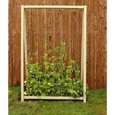 A Frame Plant Support Living Larder