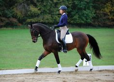 Are you looking to improve your dressage seat? Check out some tricks on how with Dressage Today Magazine​.